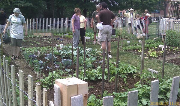 Busy garden on June 5
